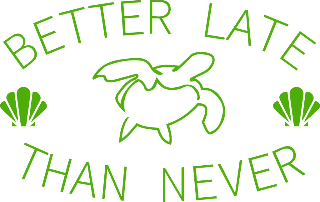 Better Late Than Never | Simple Minimal Green Design with Turtle and Seashells
